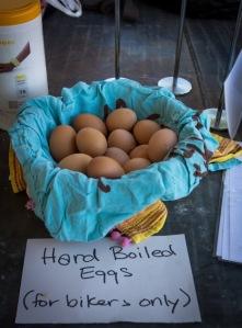e4e eggs